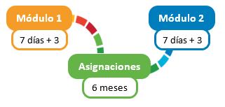 Gráfico de los módulos bridge  Modulo 1, 7 días + 3 Asignaciones 6 meses  Modulo 2, 7 días +3